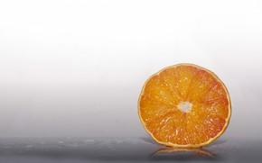 Picture orange, slice, citrus, slice