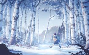 Picture forest, boy, birch