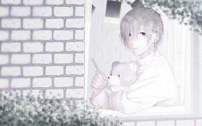 Picture window, guy, Teddy bear