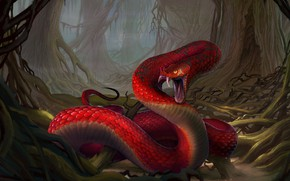 Picture forest, snake, snakes