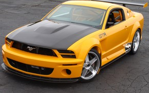 Picture Concept, Mustang, Ford, GT-R, 2004