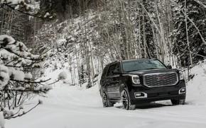 Picture snow, 2018, GMC, SUV, Denali, Yukon