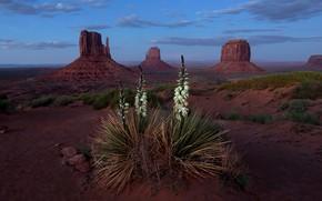 Picture Landscape, Blue Hour, Monument Valley