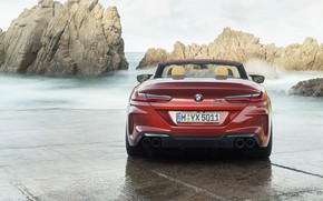 Picture BMW, supercar, rear view, Cabrio, Competition, 2019, BMW M8, F91