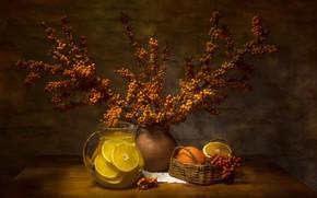 Picture branches, berries, oranges, drink, pitcher, basket, citrus, sea buckthorn, Татьяна Феденкова