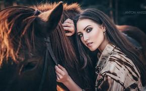 Picture look, girl, face, horse, horse, Maria, Anton Kharisov