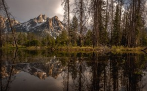 Picture trees, landscape, mountains, nature, lake, reflection, beauty