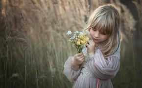 Picture nature, dress, girl, grass, child, a bunch, Marta Obiegla