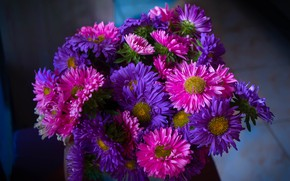 Picture flowers, the dark background, bouquet, pink, lilac, asters