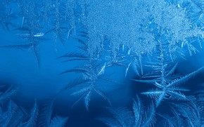 Picture cold, winter, frost, glass, snow, snowflakes, pattern, ice, structure, texture, frost, New year, crystals, blue …