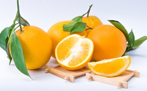 Picture white, background, oranges, citrus, Orange, Fruit