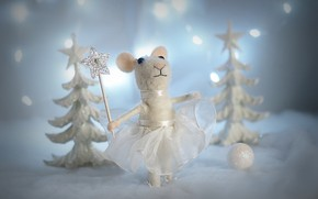 Picture holiday, toy, mouse