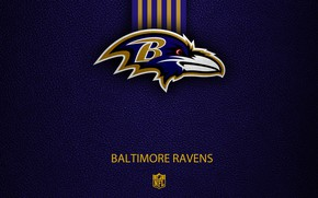 Picture wallpaper, sport, logo, NFL, Baltimore Ravens