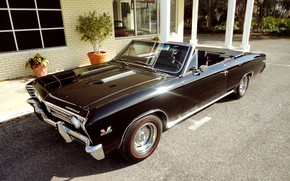 Picture Chevrolet, Chevelle, Convertible, Muscle classic