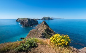 Picture water, shore, vegetation, pond, Anacapa Island