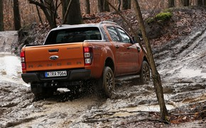 Picture forest, trees, Ford, dirt, pickup, Ranger, feed, Wildtrak