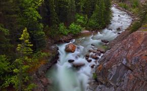 Picture forest, trees, rock, river, stones, Canada, Albert, Alberta, Canada, Jasper National Park, Jasper national Park, …