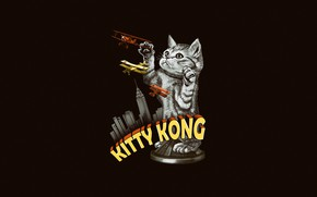 Picture King Kong, Minimalism, Kitty, Aircraft, Humor, Cat, Art, Kitty, Kong, by Vincenttrinidad, Vincenttrinidad, by Vincent …