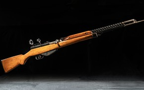Picture Russia, Herman Korobov, Semi-automatic rifle, TKB-386