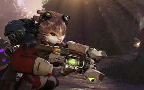 Picture cat, weapons, being, Crucible