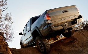 Picture Toyota, pickup, feed, Tacoma, 2020