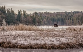 Picture winter, lake, house