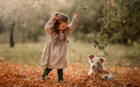 Picture autumn, leaves, joy, girl, puppy