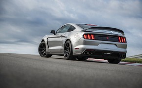 Picture grey, Mustang, Ford, Shelby, back, GT350R, 2020