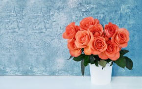 Picture roses, vase, buds