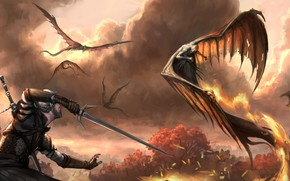 Picture birds, warrior, fantasy, art, illustration