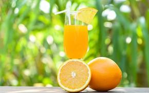 Picture light, green, table, background, half, glass, oranges, slice, juice, tube, drink, bokeh, fresh, orange, fresh
