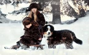 Picture winter, snow, nature, children, animal, dog, boy, girl, puppy, Bernese mountain dog
