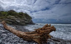 Picture stones, coast, France, snag