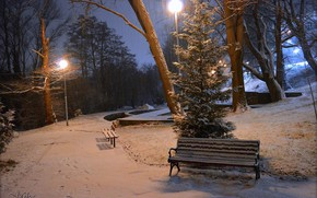 Picture Winter, Night, Snow, Lights, Park, Winter, Night, Park, Snow, Benches