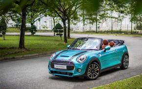 Picture road, nature, Park, Mini, convertible, Cabrio, Cooper S