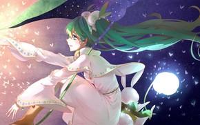 Picture night, lights, vocaloid, the full moon, Hatsune Miku, white dress, green hair, Vocaloid, moths, moon …