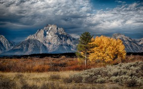 Picture Wyoming, USA, Teton