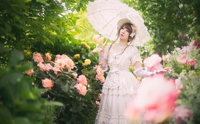 Picture greens, white, summer, look, leaves, girl, flowers, branches, pose, umbrella, mood, foliage, roses, spring, hat, …