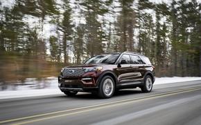 Picture forest, Ford, SUV, Explorer, Platinum, 2020