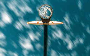 Picture light, retro, mesh, shadow, ring, basketball