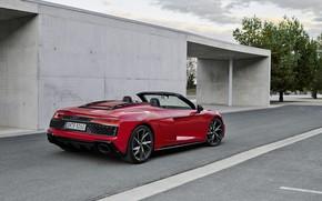 Picture Audi, Audi R8, rear view, Spyder, V10, 2020, RWD