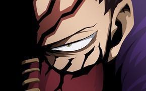 Picture eyes, minimalism, Boku no Hero Academy, My Hero Academia, My Hero Academy