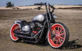 Picture Harley Davidson, Harley-Davidson, Custom, Thunderbike, By Thunderbike, Street Bob, Red Wheel MBT