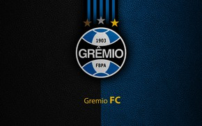 Picture wallpaper, sport, logo, football, Brazilian Serie A, Lap