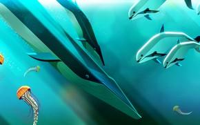 Picture The ocean, Fish, Sea, Fish, Medusa, Style, Dolphin, Kit, Jellyfish, Fish, Whales, Animals, Art, Art, …