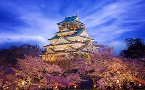 Picture castle, beauty, Japan, lighting, Himeji Castle in Osaka