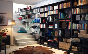 Picture Library, Books, Shelves, Стеллажи