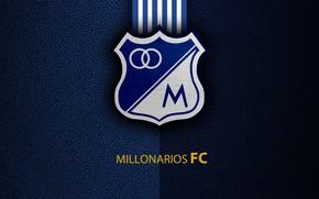 Picture wallpaper, sport, logo, football, Millionaires