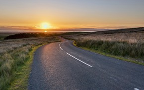 Picture road, field, summer, landscape, sunset, nature