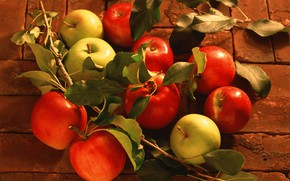 Picture leaves, apples, harvest